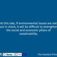 Istanbul Principle 4-11