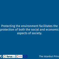 Istanbul Principle 4-12