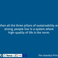 Istanbul Principle 4-13