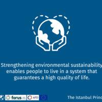 Istanbul Principle 4-14