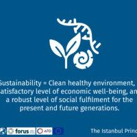 Istanbul Principle 4-15