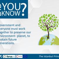 Istanbul Principle 4-17