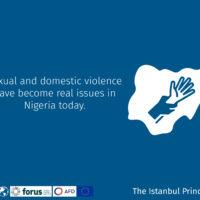 Istanbul Principles 2-05