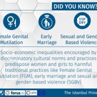 Istanbul Principles 2-06