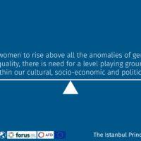 Istanbul Principles 2-07