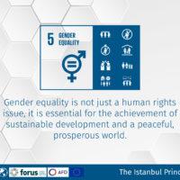Istanbul Principles 2-09